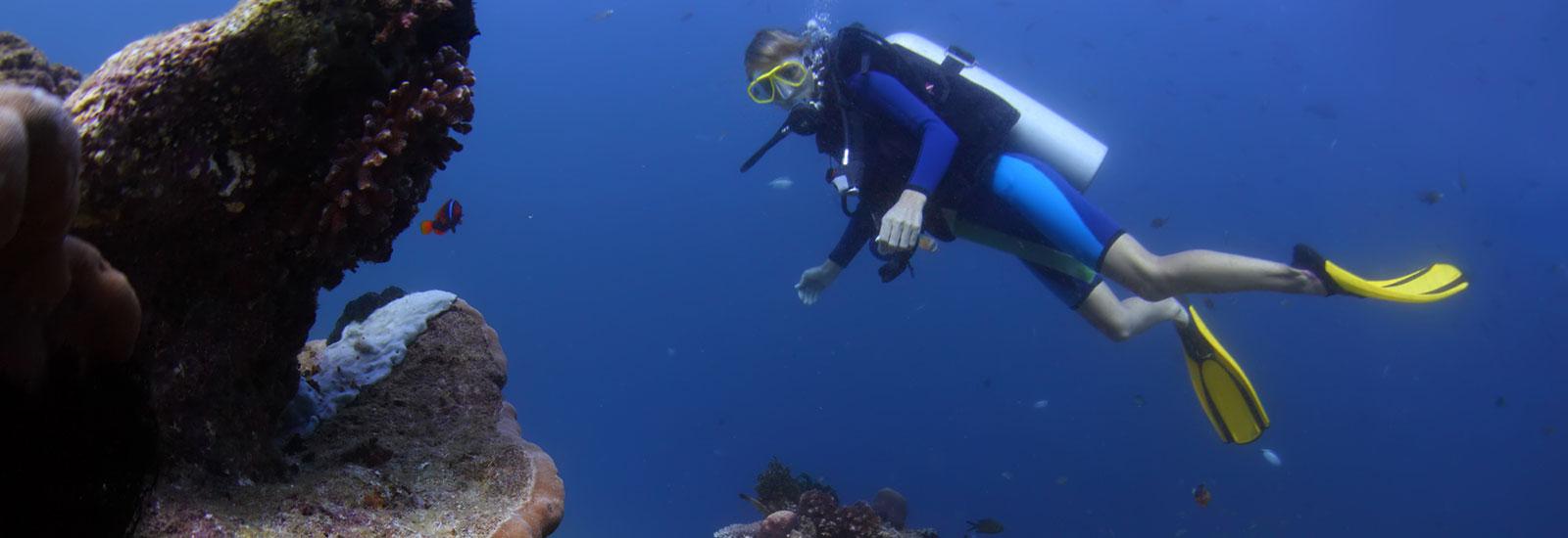 Adventure On Cruises - Scuba Diver